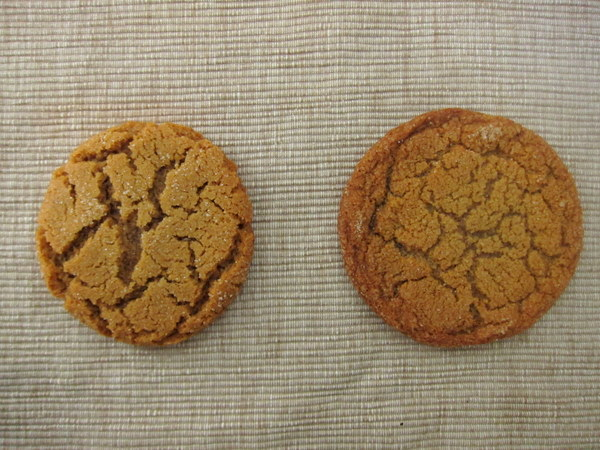 Ginger_cookies_2