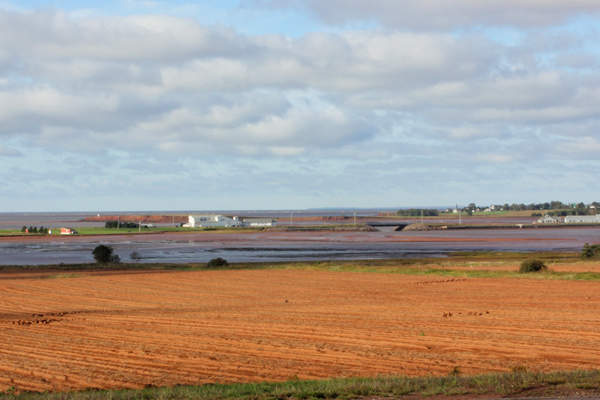 pei_fields