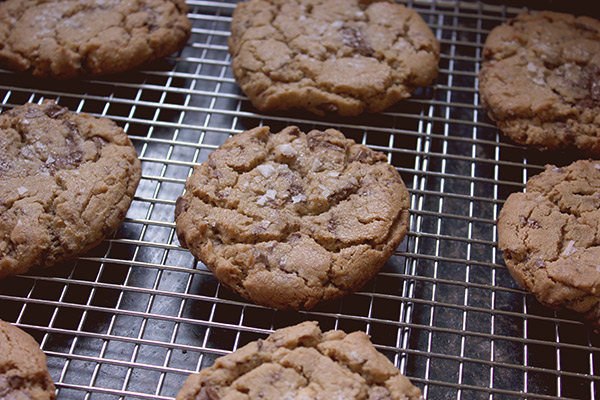 Peanut_butter_chocolate_cookie